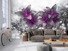 Samolepicí tapeta fialová lilie - 294x210 cm - Murando DeLuxe