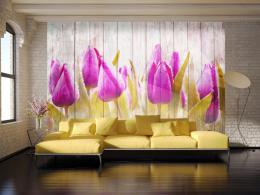 Murando DeLuxe Tapeta fialové tulipány na døevì