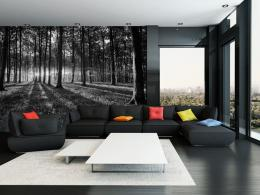 Murando DeLuxe Èernobílý lesní svìt Rozmìry (š x v) a Typ  350x245 cm - vliesové