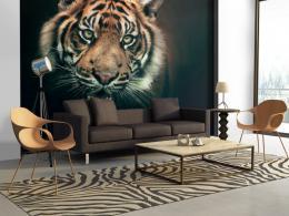 Murando DeLuxe Tapeta tygr bengálský