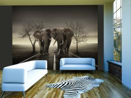 Murando DeLuxe Sloni na cestì