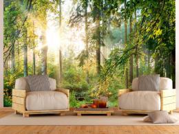 Murando DeLuxe Letní les  - zvìtšit obrázek