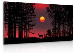 InSmile ® Lesní svoboda Velikost (šíøka x výška)  150x70 cm