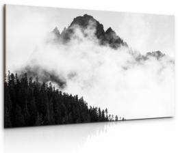 Malvis Obraz mlha v Alpách v èernobílé