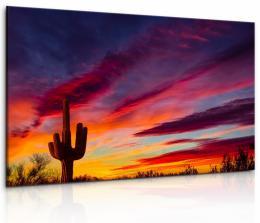 InSmile ® Obraz Západ slunce v poušti
