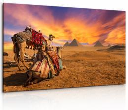 InSmile ® Obraz Egyptská sahara