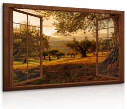 InSmile ® Obraz Okno do ráje pøírody