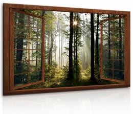 InSmile ® Okno v ranním lese