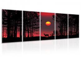 InSmile ® Vícedílný obraz - Lesní svoboda