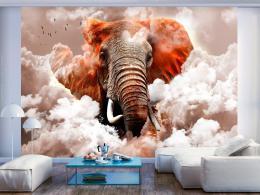 Murando DeLuxe Tapeta slon v oblacích - hnìdý