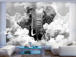 Murando DeLuxe Tapeta slon v oblacích - èernobílý