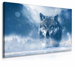InSmile ® Obraz vlk v zimì