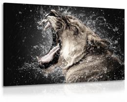 InSmile ® Obraz lvice s vodou