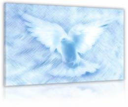 InSmile ® Obraz nebeská holubice