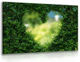 InSmile ® Obraz živý plot - srdce