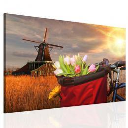 Obraz na zeï - tulipány v koši - 70x50 cm - InSmile ®