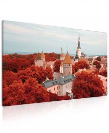 InSmile ® Obraz Mìsto Tallinn