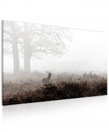 InSmile ® Obraz Jelen v mlze  - zvìtšit obrázek