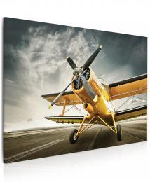 Malvis Obraz Žluté letadlo