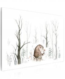 Malvis Obraz malovaný medvídek
