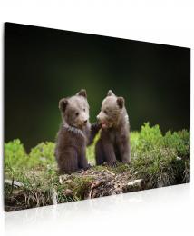 InSmile ® Obraz medvíïata v lese