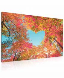 InSmile ® Obraz Srdce v korunách stromù