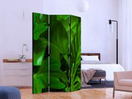 Murando DeLuxe Paraván zelené listí II  - zvìtšit obrázek