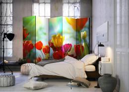 Murando DeLuxe Paraván jarní tulipány  - zvìtšit obrázek