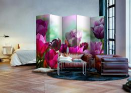 Murando DeLuxe Paraván tulipány II  - zvìtšit obrázek