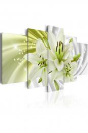 Murando DeLuxe Obraz - Lilie v zelené  - zvìtšit obrázek