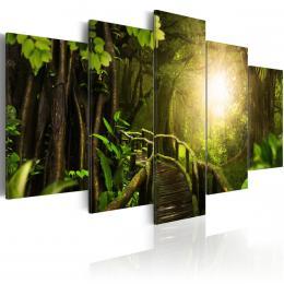 Murando DeLuxe Magická džungle Velikost  220x110 cm