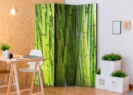 Murando DeLuxe Paraván bambusový les