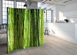 Murando DeLuxe Paraván bambusový les II