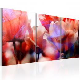 Murando DeLuxe Moderní obraz na stìnu - tulipány lásky Velikost  120x60 cm