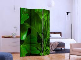 Murando DeLuxe Paraván zelené listí II Velikost  135x172 cm