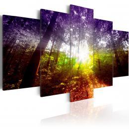 Murando DeLuxe Pìtidílné obrazy - duhový les