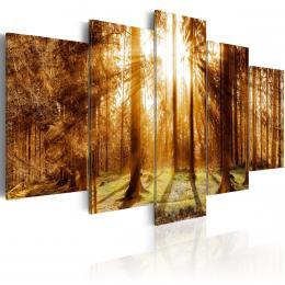 Murando DeLuxe Lesní osvìtlení Velikost  100x50 cm