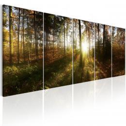 Murando DeLuxe Obraz - les Velikost  150x60 cm