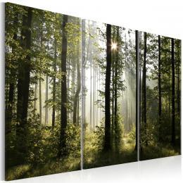 Murando DeLuxe Lesní vítání Velikost  120x80 cm