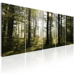 Murando DeLuxe Pìtidílné obrazy na stìnu - ráno v lese