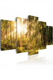 Murando DeLuxe Proslunìný les