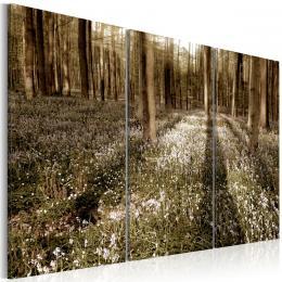 Murando DeLuxe Tøídílné obrazy - jarní les Velikost  135x90 cm