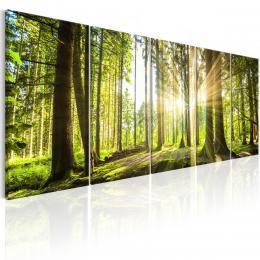 Murando DeLuxe Vícedílný obraz - èarovný les Velikost  225x90 cm