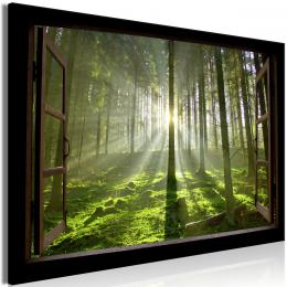 Murando DeLuxe Obraz okno lesní úsvit