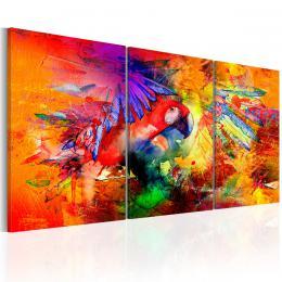 Murando DeLuxe Tøídílné obrazy - papoušek v ráji