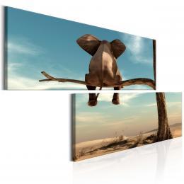 InSmile ® Zábavný slon
