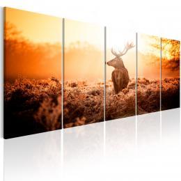 Murando DeLuxe Vícedílný obraz - jelen v západu slunce