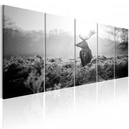 Murando DeLuxe Èernobílý obraz - strážce pole Velikost  125x50 cm