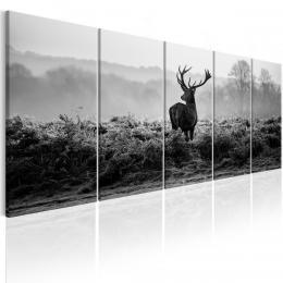 Murando DeLuxe Èernobílý obraz - jelen Velikost  125x50 cm