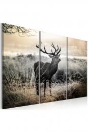 Murando DeLuxe Vícedílný obraz - jelen v krajinì Vel. (šíøka x výška)  75x50  cm